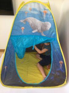 1000. Палатка#Tent (1)