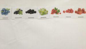 109. Berries (ENG) (1)
