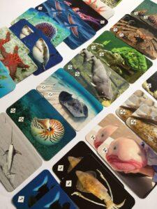 605. Memo Подводный мир# Underwaterworld (1)