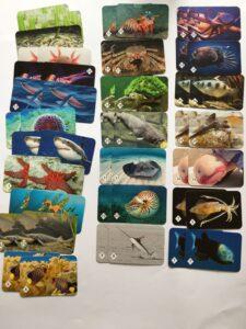 605. Memo Подводный мир# Underwaterworld (2)