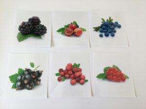 122. Fruits
