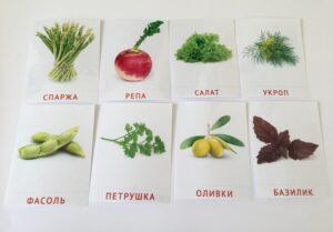 137. Vegetables