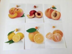 143. Fruits