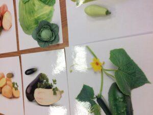 154. Vegetables (4)