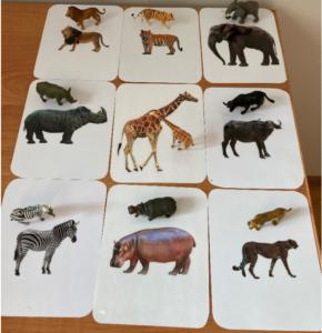 150. Safari animals