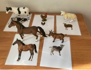 158. Farm animals